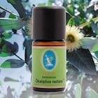 Nuka Ökaliptus radiata* Organik 5 ml okaliptus yağı avustralya