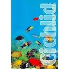 Cichlid Balıkları / Yıldırım Çelebi