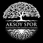 AKSOYSPOR