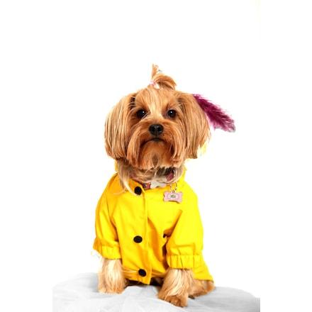 Doxy Küçük Irk Önden Çıtçıtlı Kapüşonlu Köpek Yağmurluğu