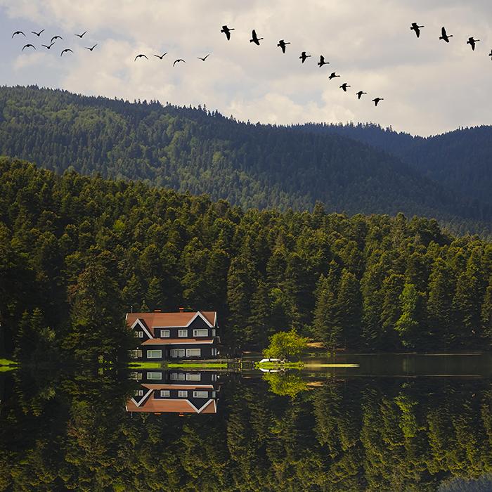 Günübirlik Abant & Cennet Göl Turu
