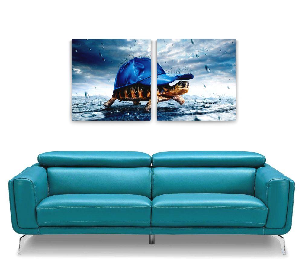 Mavi Şapkalı Kaplumbağa 2 Parça Kanvas Tablo